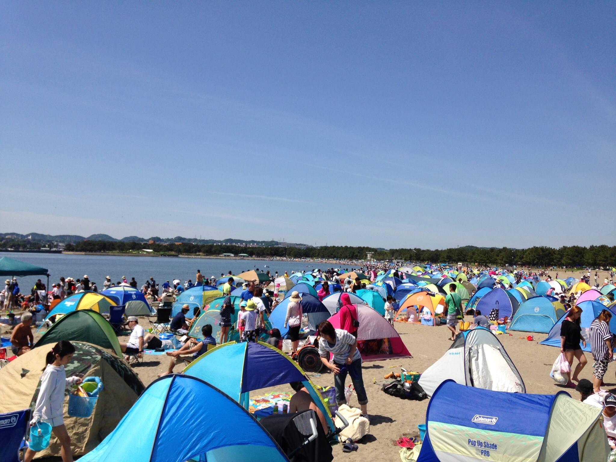 【横浜市】潮干狩りするために、「海の公園」に来た日記