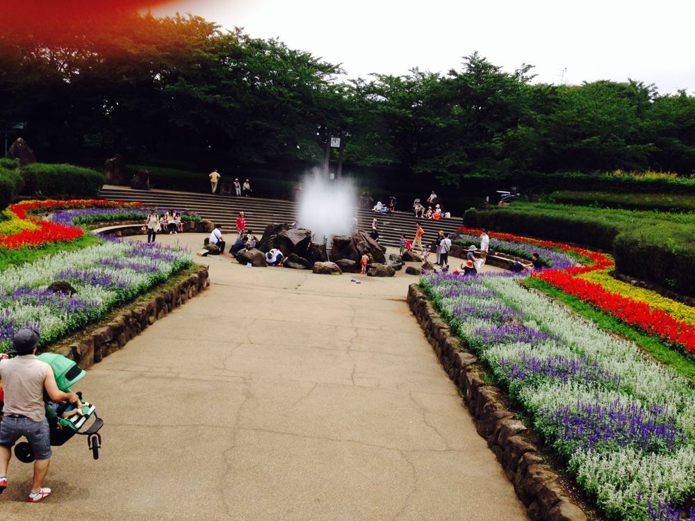 【横浜市】四季の森公園は、スペース多め。ふらっと行きたい公園です。