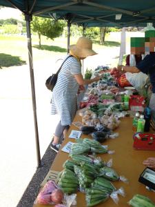 茅ヶ崎里山公園 野菜売り