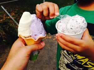 【神奈川県藤沢市】牛さんをぼんやり眺めながら、絶品アイスを食べられる「飯田牧場」