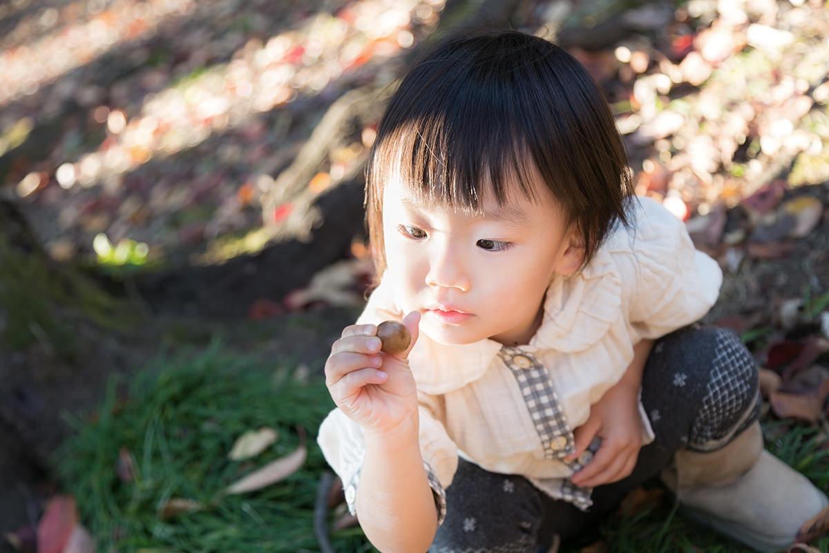 障害児を対象とした「放課後等デイサービス」は、もともと多種多様な内容が求められる素地がある