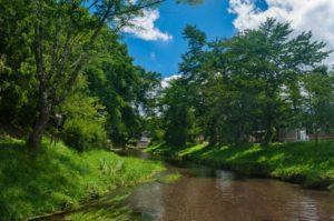 都会に住んでても、大自然の一部であることに変わりない