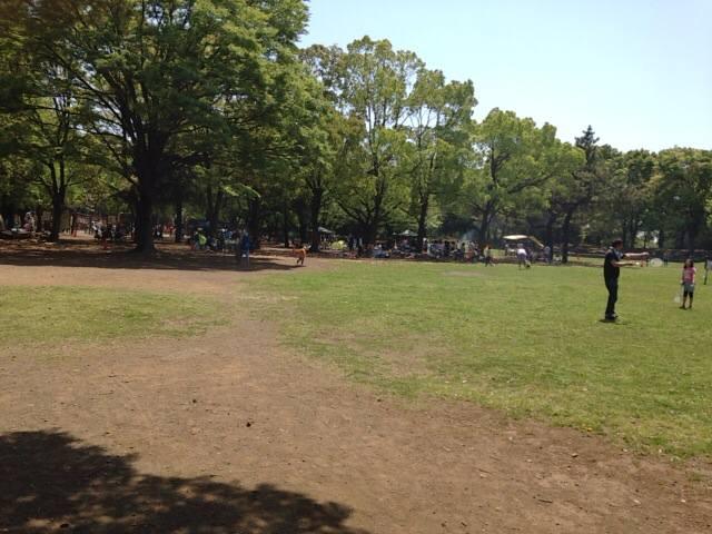 【大和市】引地台公園は、ゆるゆるでBBQができるいい子連れスポットでした