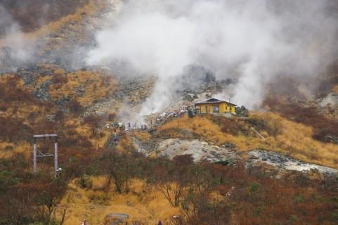 地震や火山噴火や放射能汚染で、今いる土地に住めなくなったらどうするの??