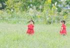 発達障害のある3歳息子へ児童発達支援事業所を探す パート2