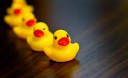 リーダーのための表現セミナー4-6〜仲間を集める順番は、感情を出してから理性を出す〜